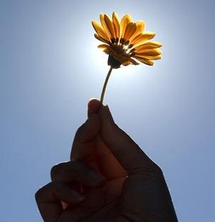 http://sitedepoesias.com.br/imagens/poemas/28420.jpg